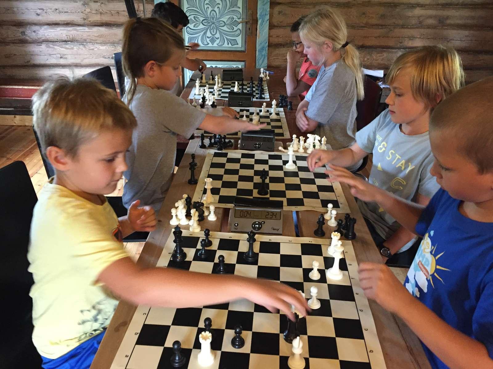 Sommerkurs sjakk